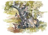 A thumbnail picture of Oaks and Deer at Bradgate Park